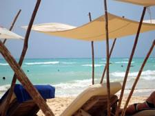 Zenzi, Playa del Carmen